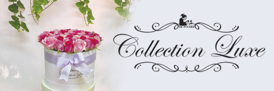 Collection Luxe Banner